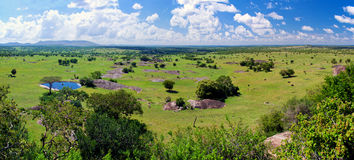 Sawanna krajobraz w Serengeti, Tanzania, Afryka Obrazy Royalty Free