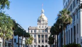 Sawanna urzędu miasta puszka palmy Prążkowana ulica Zdjęcia Royalty Free