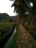 Sawarna-Dorf Stockfotografie