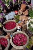 Sawasdee, cumprimento de Tailândia Imagem de Stock Royalty Free