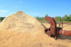 Sawdust. Old mechanism near heaps sawdust stock image