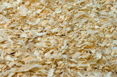 Sawdust. Background from wood sawdust close up royalty free stock photo