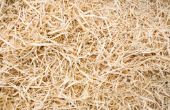 Sawdust. Fresh wooden sawdust texture closeup stock images