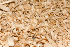 Sawdust. Texture in sunny day macro royalty free stock image
