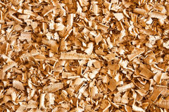 Sawdust Stock Photo