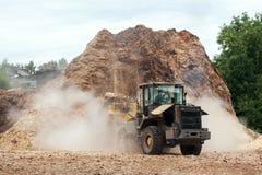 sawdust Imagem de Stock Royalty Free