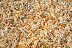 Sawdust. Background of an yellow sawdust Royalty Free Stock Photos