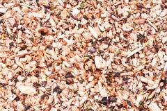 sawdust Royaltyfri Fotografi