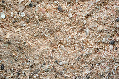 Sawdust animal bedding (Texture) Royalty Free Stock Images