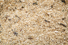 Sawdust as a background Royalty Free Stock Image