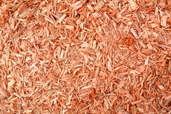 Sawdust background Stock Images