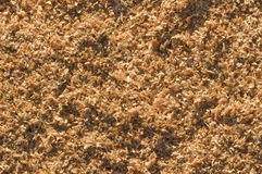 Sawdust background seamlessly tileable Royalty Free Stock Photos