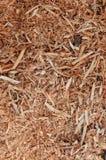 Sawdust background Stock Image