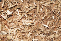 Sawdust brown color Stock Photo
