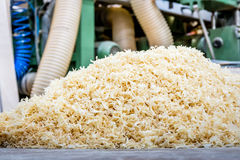Sawdust in the carpentry. Closeup Royalty Free Stock Image