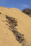 Sawdust and chip wood Royalty Free Stock Photos