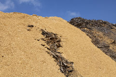 Sawdust and chip wood Stock Images