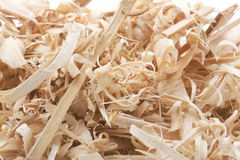 Sawdust close up. Object on white - sawdust close up Stock Image