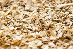 Sawdust close up Royalty Free Stock Images