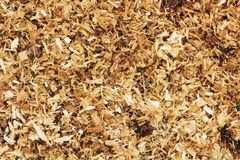 Sawdust Stock Photos