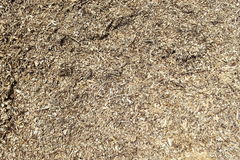 Sawdust detail. Detailed view on the sawdust Royalty Free Stock Photography