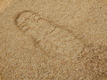 Sawdust Footprint Royalty Free Stock Photos