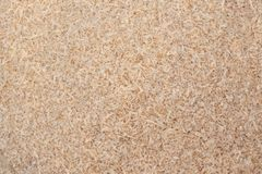 Sawdust. Photo of wood sawdust to show it`s texture stock photos