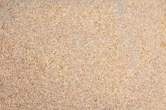 Sawdust. Photo of wood sawdust to show it`s texture stock photo