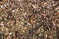 Sawdust Royalty Free Stock Photo