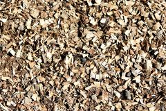 Sawdust. Texture wallpaper Stock Images