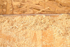 Sawdust and shavings on constructed new floor closeup Royalty Free Stock Images