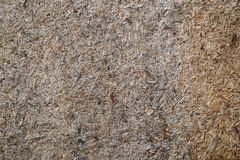 Sawdust texture background close up Royalty Free Stock Images