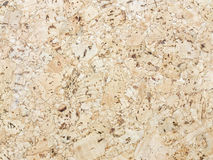 Sawdust texture Stock Photography