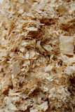 Sawdust. Texture of wood chips , Close up view on wood shavings Abstract background stock images