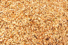 Sawdust Royalty Free Stock Photo