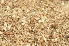 Sawdust wood Stock Photos