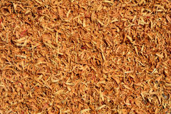 Sawdust of wood. Abstract texture background Stock Photography