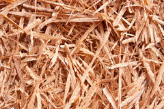 Sawdust wood as background Royalty Free Stock Photography