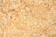 Sawdusts. Natural background - a closeup photo of sawdusts Stock Photography