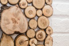 Wood saw cut tree, with rings of life royalty free stock image