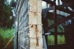 Slice of wood Royalty Free Stock Photos