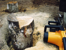 Sawed off a log. Sawn off saw a log sticking out of the ground in the sawdust Stock Images