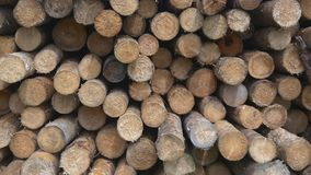 Sawed timber in the warehouse stock video footage
