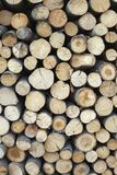 Sawed tree trunks and branches in different sizes, piled up in blue container Wood storage Timber industry Stock Photos