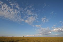 Sawgrass expanse in Everglades National Park, Florida. Sawgrass expanse in Everglades National Park, Florida, from the Pa-Hay-Okee boardwalk under a beautiful stock photography