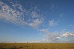 Sawgrass vidd i Everglades nationalpark, Florida arkivbild