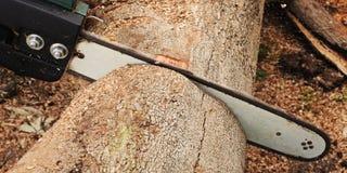 sawing силы стоковое изображение