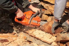 Sawing firewood Royalty Free Stock Photography