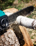 Sawing firewood Stock Images