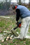 Sawing firewood with a chainsaw Stock Photos